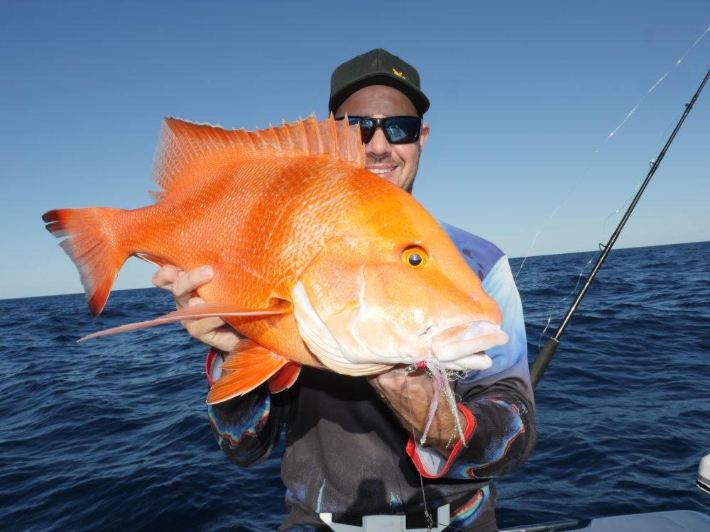 A nice school sized red taken on the Striker 7 with flasher