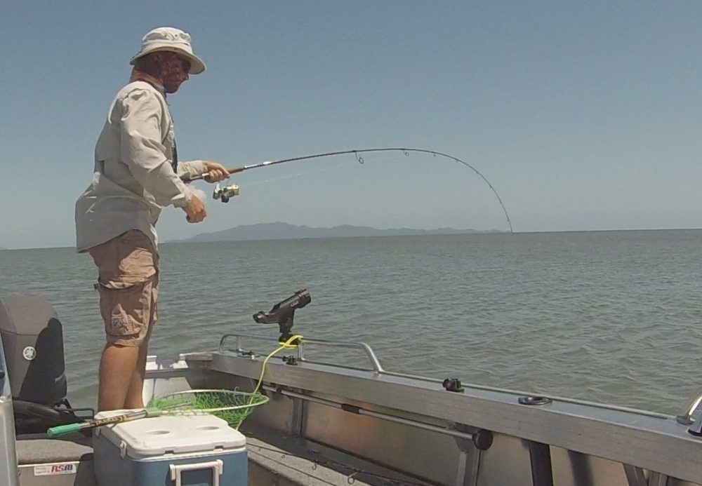 1.Using a light tipped graphite rod is a sure way to confidently keep pressure on a jumping fish